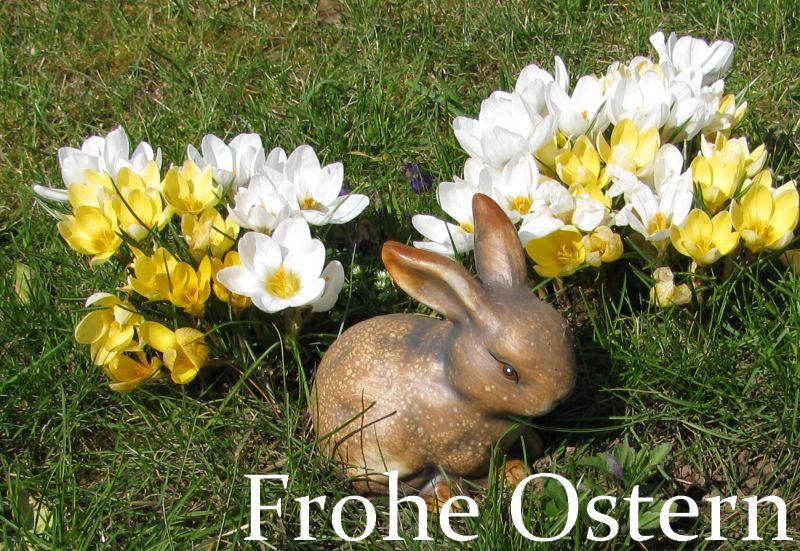 Wwwinet4younet Frohe Ostern Wünscht Inet4younet